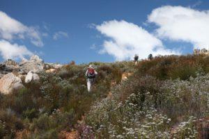 funbos hikers -galeo