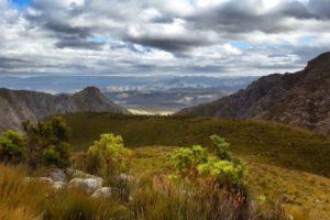 fynbos valley 3-ralph
