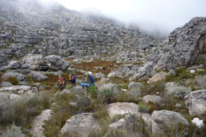 hikers-mist4-david