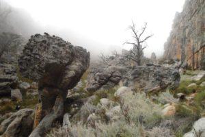 misty mount-dom